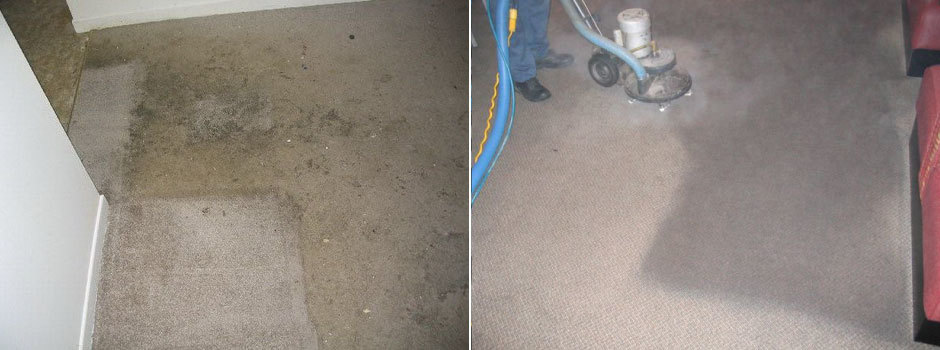 Rug & Carpet Cleaning St Catharines Niagara